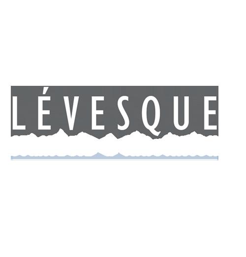 Lévesque Stratégie & Innovation - Éric Lévesque